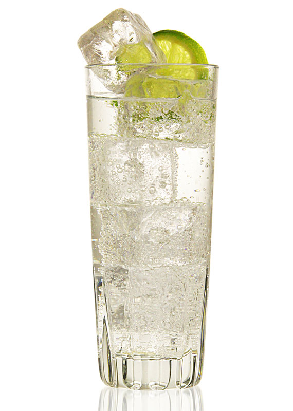 Summer Gin and Tonic